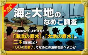 新原木2 本 & 新種レアなめこ12種追加!