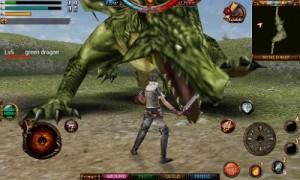 ドラゴンと戦う!