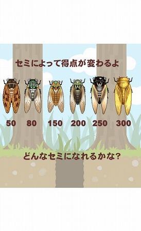 セミの幼虫が羽化するまで無事に木の上まで導いてあげよう。