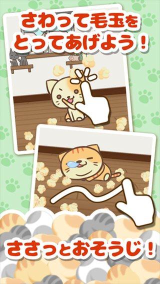 とにかくもう猫が可愛いすぎて...