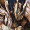 【レイヴン】第1回「全ての武具に最強になる可能性が!ハクスラの醍醐味である装備の仕様を理解せよ!」【RAVEN攻略日記】