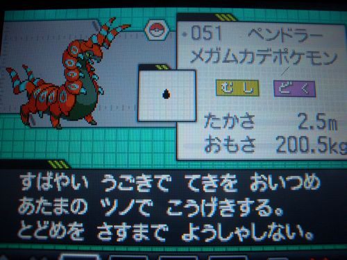CIMG2247_20100919020919