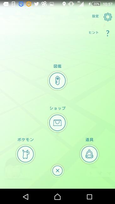 自分のポケモンを見るときの遷移画面の右上に「設定」ボタンがある。