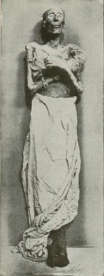 オジマンディアス(ラムセス2世)のミイラ 画像出典:https://ja.wikipedia.org/wiki/ラムセス2世