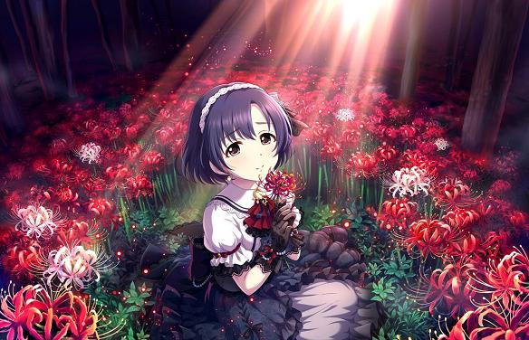[手折られぬ花]白菊ほたる+