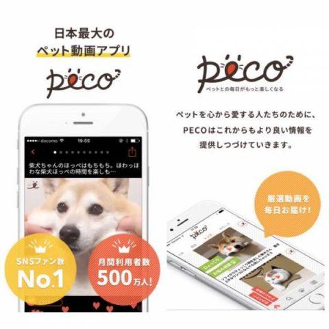 AppStoreのトップ画