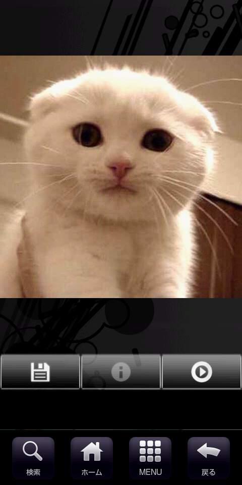 キャッツ パズルボックス androidアプリスクリーンショット3