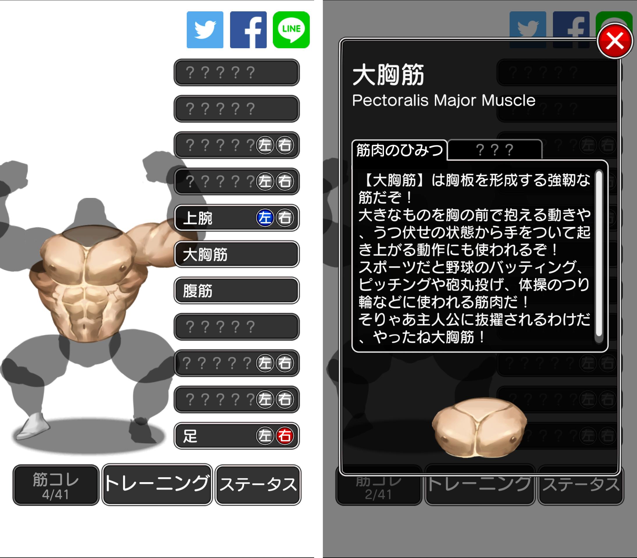 androidアプリ キンニクエスト 筋肉と筋肉と筋肉と呪われし筋肉攻略スクリーンショット7