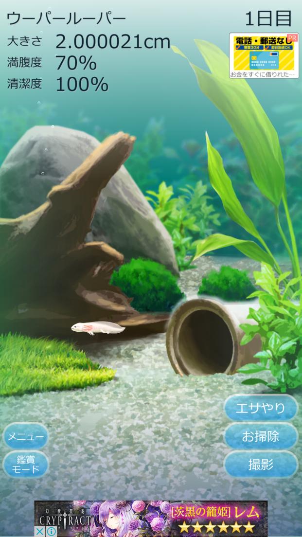 癒しのウーパールーパー育成ゲーム androidアプリスクリーンショット1