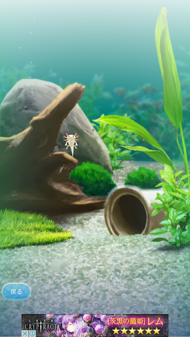 癒しのウーパールーパー育成ゲーム androidアプリスクリーンショット2