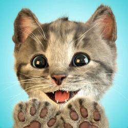 小さな子猫(Little Kitten)