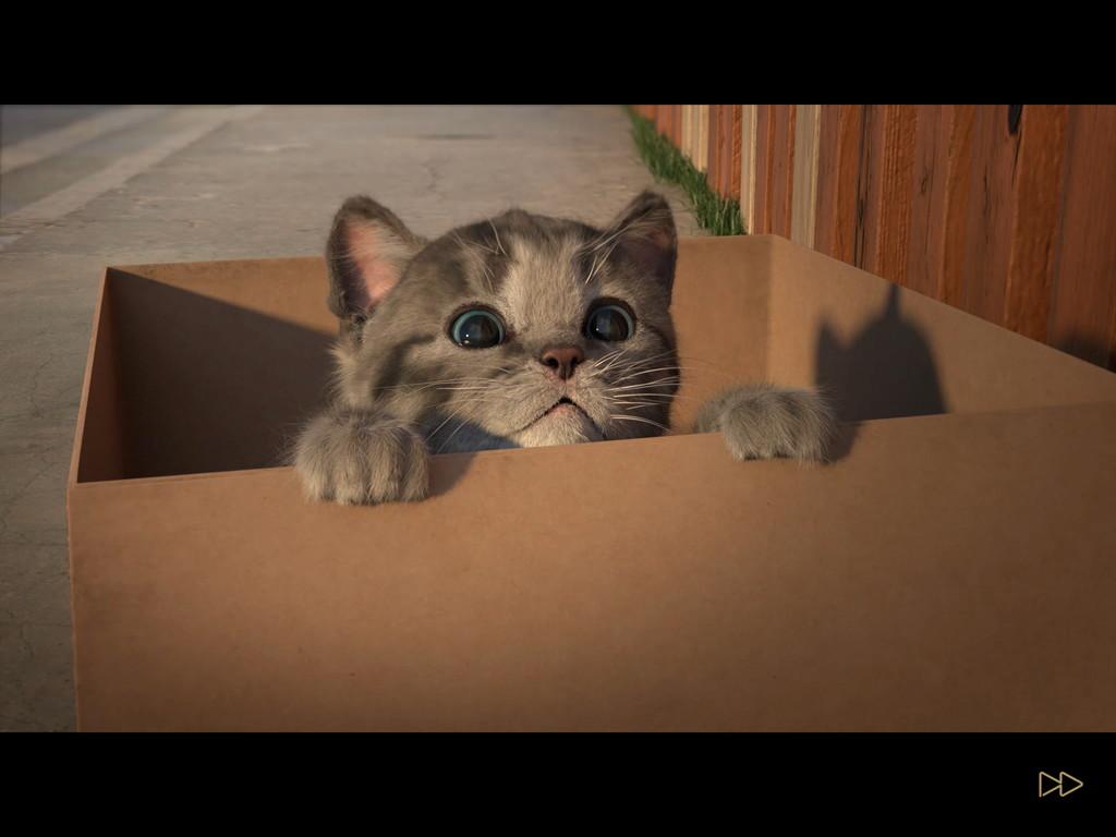 androidアプリ 小さな子猫(Little Kitten)攻略スクリーンショット1