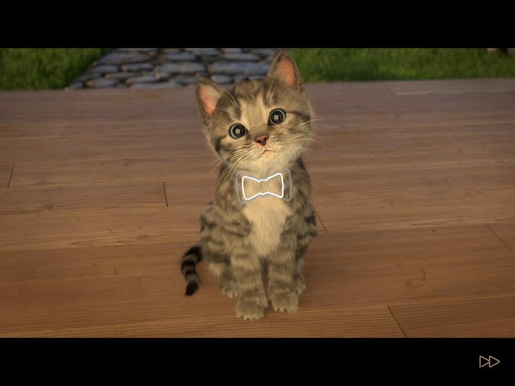 androidアプリ 小さな子猫(Little Kitten)攻略スクリーンショット2