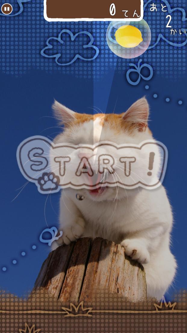 のせて のせ猫 androidアプリスクリーンショット1