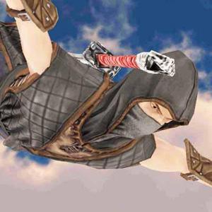ニンジャ サムライ アサシンヒーロー2(Ninja Samurai Assassin Hero II)