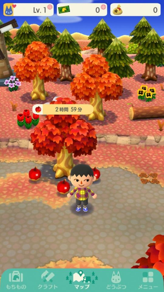 ac-pocketcamp_08