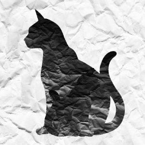 迷い猫、母猫ヲ捜ス旅