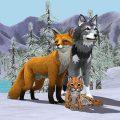 ワイルドクラフト:ワイルドシムオンライン(Wild Craft)
