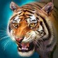 The Tiger(ザ・タイガー)