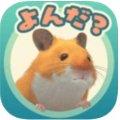 動物育成シミュレーションゲーム