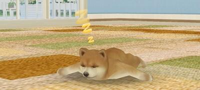 愛くるしい犬が登場するスマホゲーム