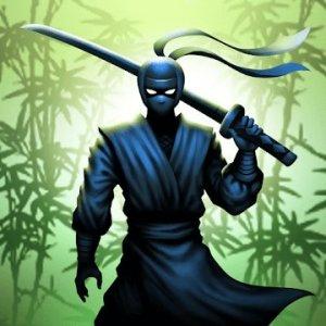 Ninja warrior: 忍者戦士