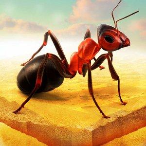 小さなアリのコロニー