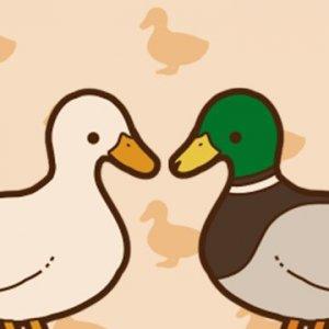 アヒルかも? Duck or Duck